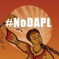 #NoDAPL : Is America occupied territory?